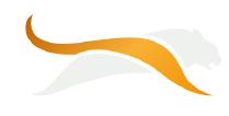 Panthera Life logo